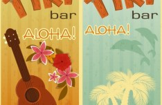 Retro Vintage Hawaii Tours Banner Vector