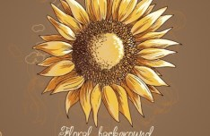 Vintage Spring Sunflower Background 01