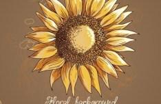 Vintage Spring Sunflower Background 01