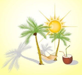 Clean Vector Sun and Coconut Trees Elements