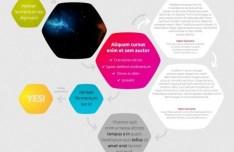 Simple Modern Shape Infographic PSD