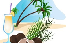 Vector Cartoon Happy Summer Day Design Elements 05