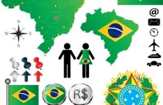Vector Brazil Information Graphic Elements