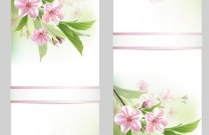 Fantastic Colorful Spring Flower Background 02