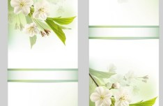 Fantastic Colorful Spring Flower Background 03