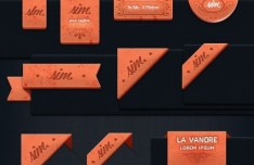 17+ Elegant Orange Ribbons Design (PSD and AI Included)