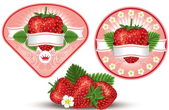 Fresh Vector Strawberry labels 02