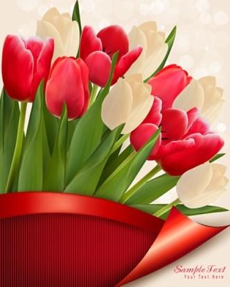 Beautiful Tulip Card Cover Design Template Vector 02