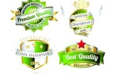 Set Of Green Golden Vintage Labels Vector