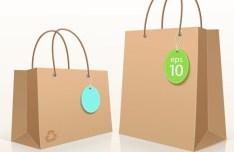 Vector Recycled Cardboard Shopping Bag Template