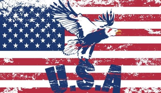Vintage American Flag Design Vector 05