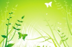 Vector Spring Flowers and Butterflies Illustration 03