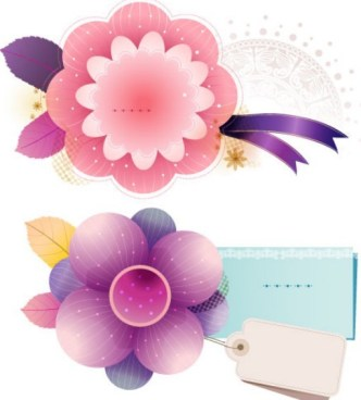 Vector Flower Ornaments