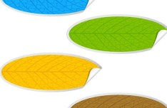 Oval Paper Like Leaf Stickers Vector