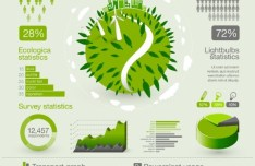 Green Ecologica InfoGraphic Design Elements Vector