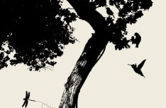 Vector Trees and Birds Silhouette 03