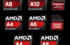 Set Of Vector AMD Processor Family Logos