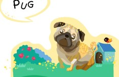 Cute Cartoon Pug Illustration Vector