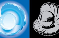 Vector Pearl Mussel