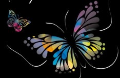 Classical Colored Butterflies and Flowers Vector 03