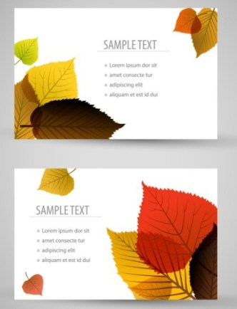 Set of Clean Vector Cards with Maple Leaf Backgrounds