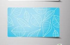 Creative Blue BIO Concept Business Card Collection Vector