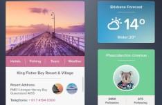 Flat Web Widgets UI Set PSD
