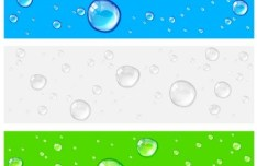 Fresh Water Drops Background Vector 01