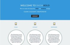 Flat Blue and White Website Template PSD