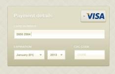 Credit Card Payment Details Interface PSD