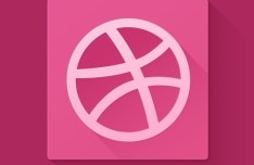 Flat Dribbble Icon with Long Shadow PSD