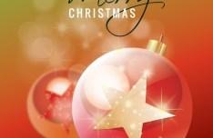 Lovely Christmas Star Ornaments Vector