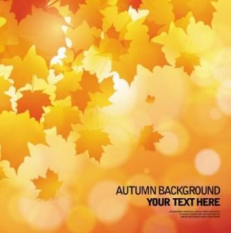 Shiny Autumn Maple Leaf Background Vector 04