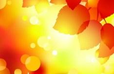 Shiny Autumn Maple Leaf Background Vector 05
