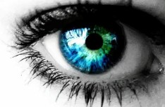 Female Blue Eye Makeup Vector