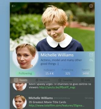 Twitter Profile Widget PSD