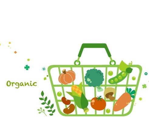 Vector Green Illustration Of Organic Foods 03