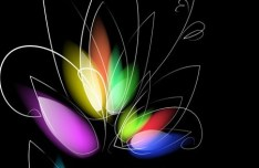 Bright Colorful Abstract Line Flower Background Vector 04