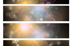 Set Of Vector Snowflake and Sunlight Banners 01