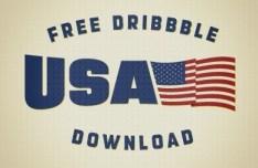 USA American Pride Flag Vector