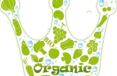 BIO Organic Concept Green Crown Vector
