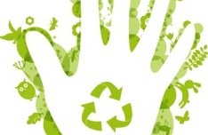 ECO Concept Green Handprint Vector