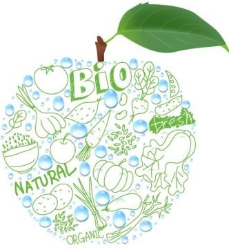 Natural BIO Concept Fresh Apple Vector
