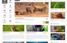 National Geographic Homepage Redesign PSD Template
