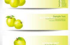 Set Of Green Apple Banners Vector
