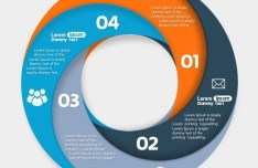 Circle Infographic Data Options PSD