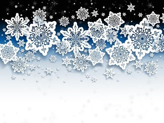 Elegant White Snowflakes Background Vector 02