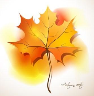 Autumn Yellow Maple Leaf Design Vector 02