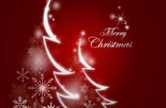 Sparkling Christmas Trees Design Vector