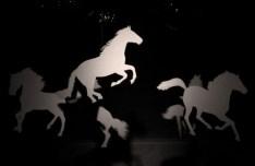 Silver Horse Silhouettes Vector